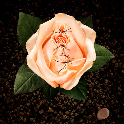 fullscreen-capture-1092013-113150-pm-bmp